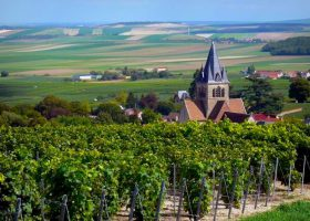 Capital of Champagne Region: Things to Do in Reims, France