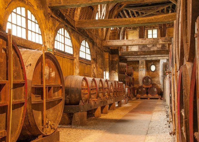 Row of oak barrels for French cider in Calvados distillery, Normandy