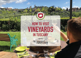 5 Tips for Planning a Vineyard Wine Tasting in Tuscany