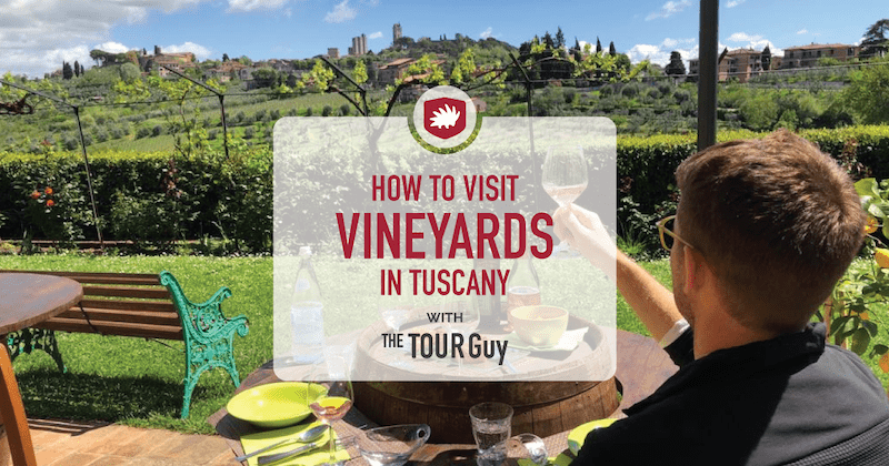 how to visit vineyards in tuscany