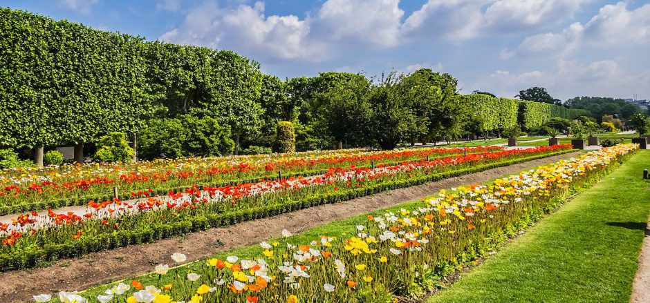 Things to Do in Paris: 5 Free Must-See Gardens & Parks