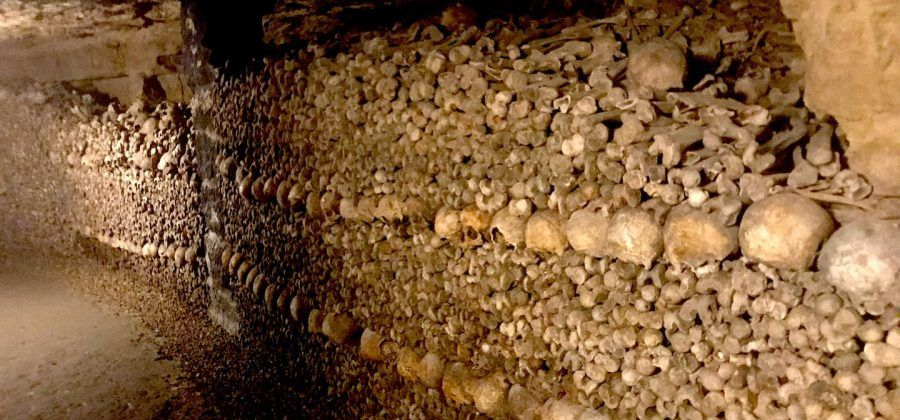 6 things to see paris catacombs
