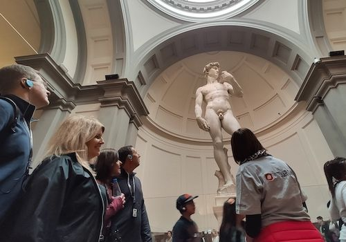 Tours of Michelangelo's David in Accademia