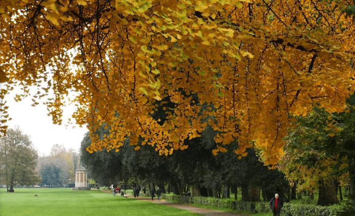 Parco delle Cascine Florence Parks