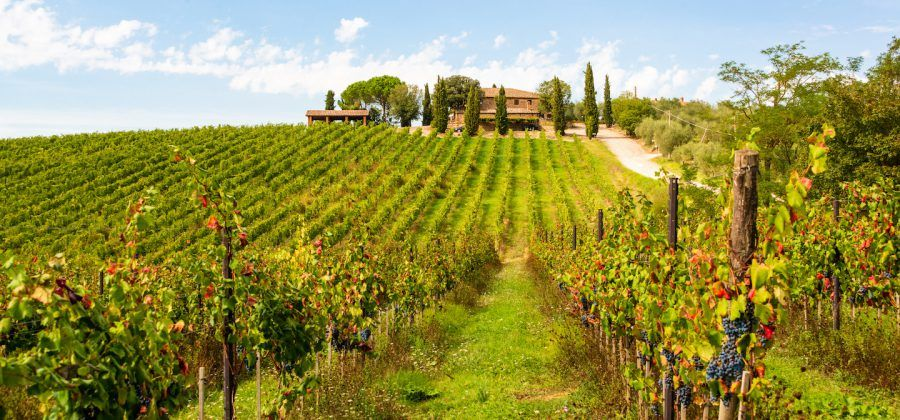 Tips for Traveling to Tuscany