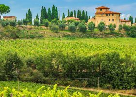 Ultimate Tuscany Wine Region Guide