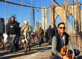 Top 21 THINGS TO DO in NYC for 2021
