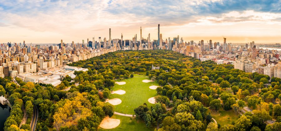 Top things to do see in central park