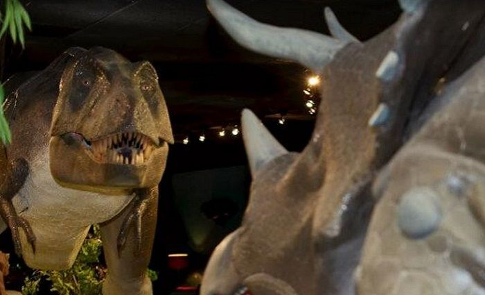 Las Vegas Natural History Museum best museums